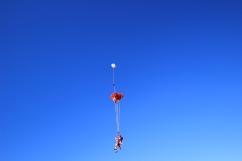 skydive-at-nz113